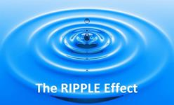 City: Where to apply RIPPLE Effect?