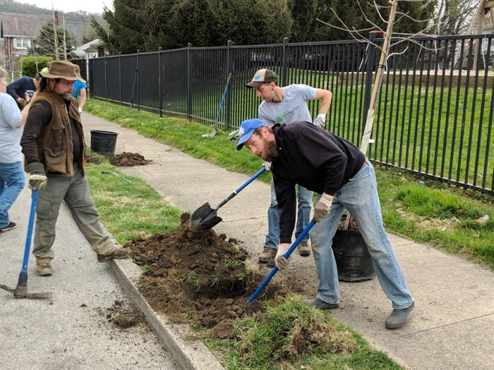 Tree-planting event Saturday in desperate need
